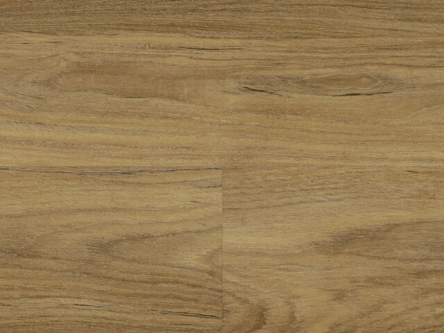Designbelag Beluga new wood zum Klicken auf HDF-Trägerplatte Aqua Protect - Winnipeg Oak, BEL119