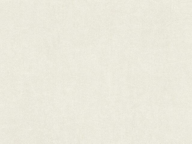 Tapete  - Wallbasics 2023-010