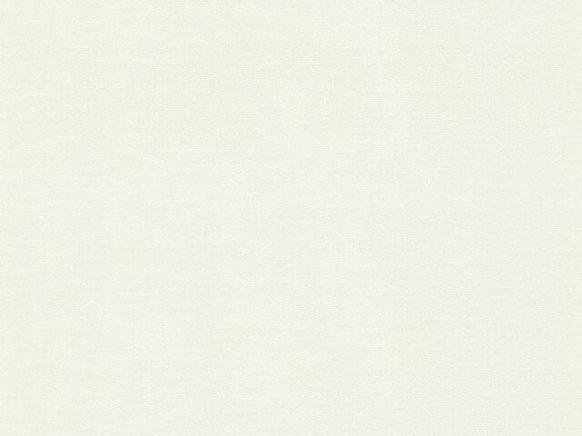Tapete  - Wallbasics 2023-011
