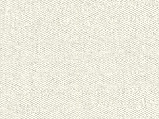 Tapete  - Wallbasics 2023-017