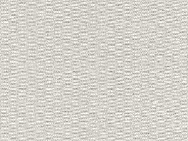 Tapete  - Wallbasics 2023-023