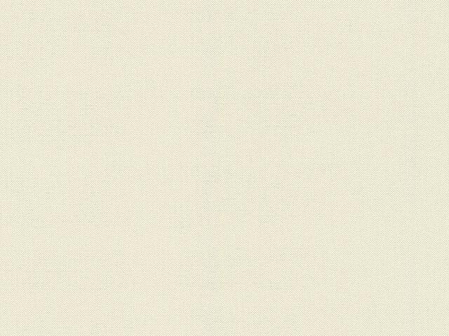 Tapete  - Wallbasics 2023-034