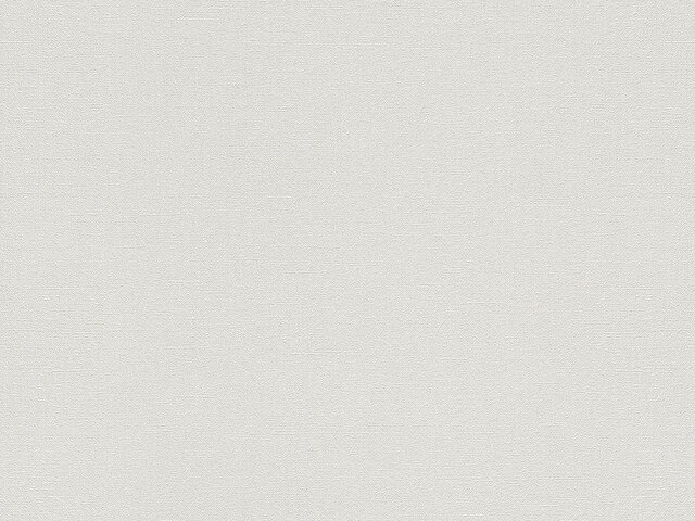 Tapete  - Wallbasics 2023-038