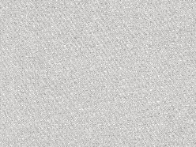 Tapete  - Wallbasics 2023-040