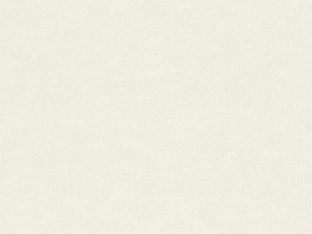 Tapete  - Wallbasics 2023-043