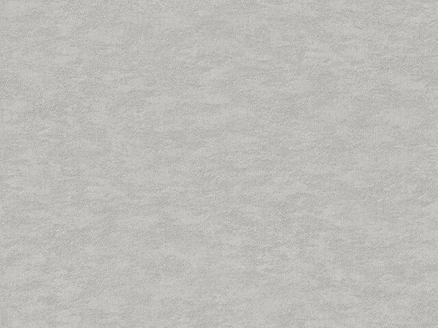 Tapete  - Wallbasics 2023-045