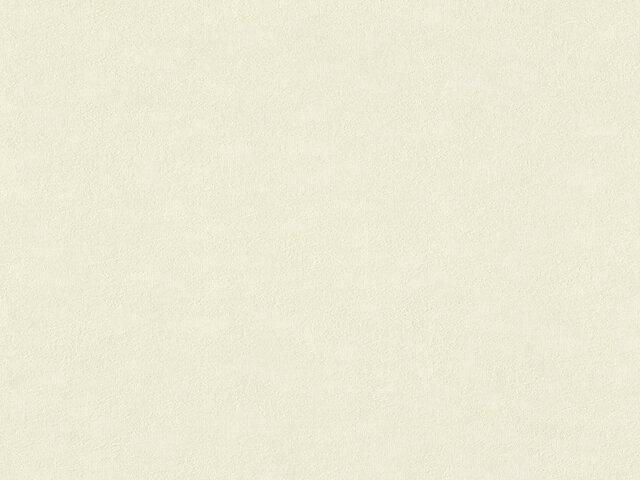 Tapete  - Wallbasics 2023-047