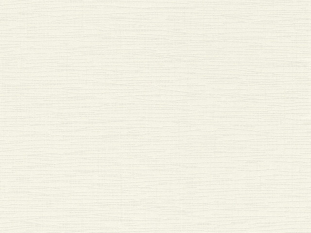 Tapete  - Wallbasics 2023-051
