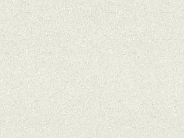 Tapete  - Wallbasics 2023-096